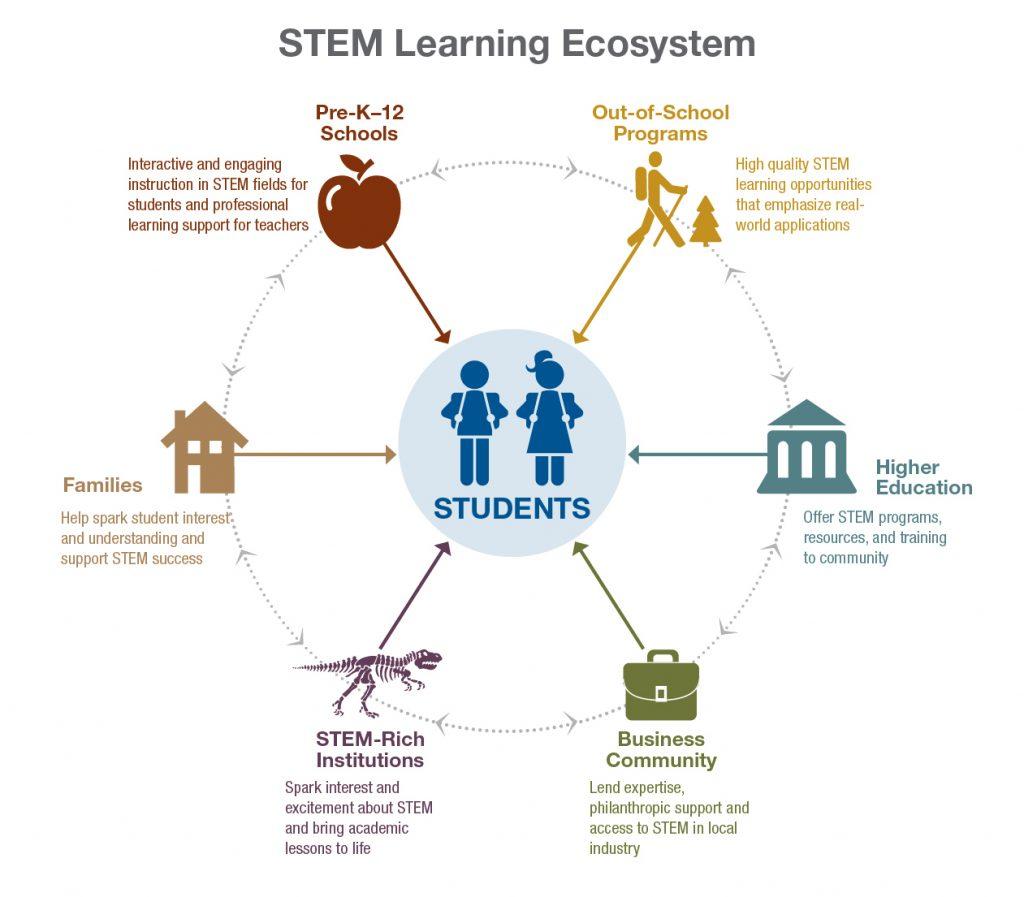 STEM Ecosystem Graphic